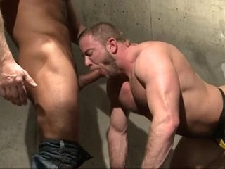 Brian Davilla and Shay Michaels   bears best